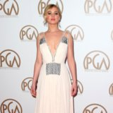 Red Carpet Dresses at 2015 Producers Guild Awards