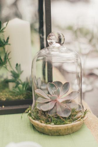 Use Greenery Instead of Flowers