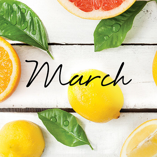Find Out What Inspired the March Must Have Box!