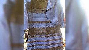The White & Gold or Blue & Black Dress: The 5 Stages of Dealing With the Debate