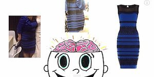 #TheDress Sparked A Huge Debate, But Science Is Here To Settle Things