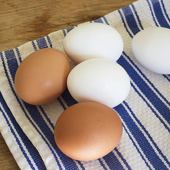 Shelf Life of Raw and Hard-Boiled Eggs