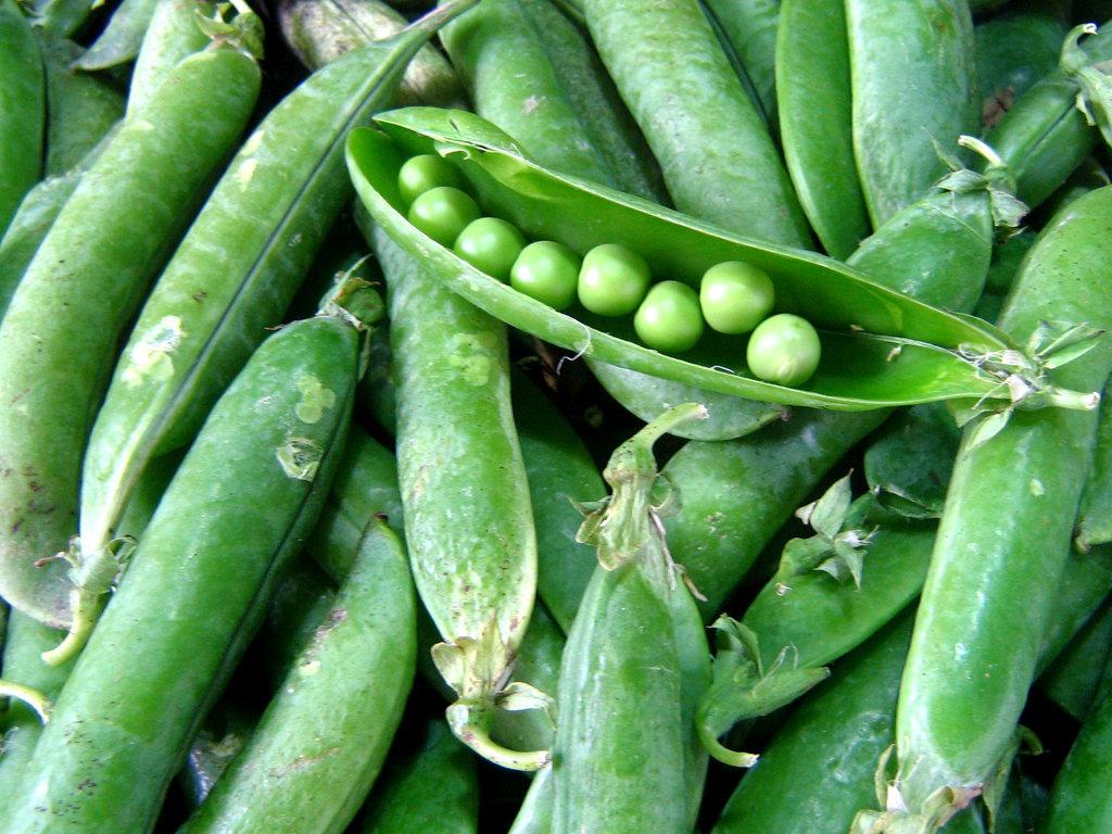 The Spring Food: Peas