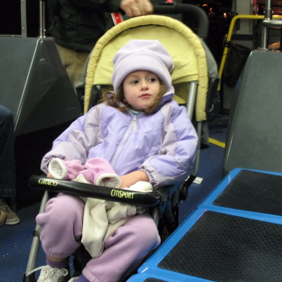 Petition to Allow Strollers on Chicago Buses