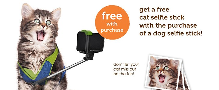 Finally, a Selfie Stick For Your Pets