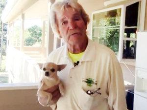 California Man Punches a Bear to Save His Chihuahua