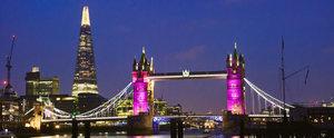 Pink Lights and Gun Salutes Mark the Birth of Princess Charlotte
