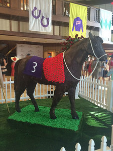 7 Things I Learned at the Kentucky Derby
