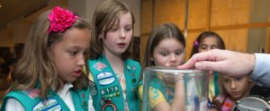 Why Girl Scouts' New Transgender Policy Faces Huge Public Criticism