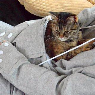 Mewgaroo Hoodie With Cat Pocket