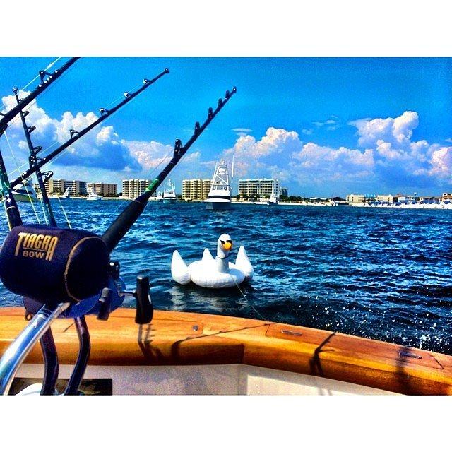 。 。 。 去釣魚