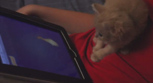 iPad Games For Your Pet? Watch This Kitten Do Some Cat Fishing!