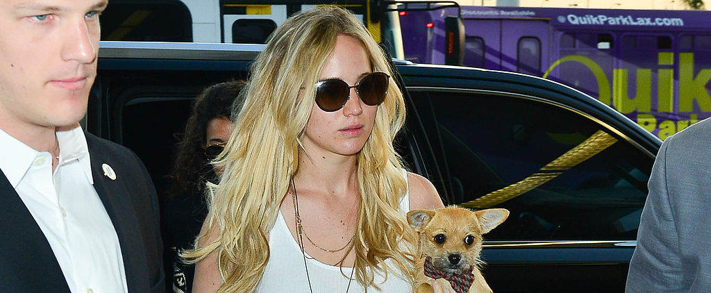 Jennifer Lawrence Traveling With Her Dog Is Cuter Than Cute