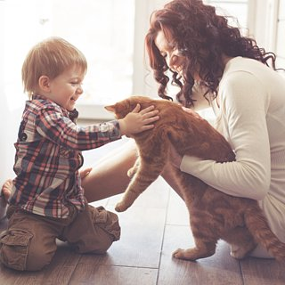 How to Keep Your Pet Happy at Home