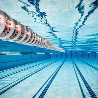 Bacteria in Pool Water