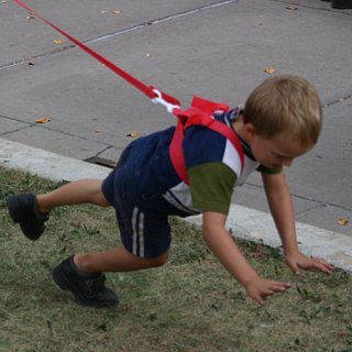 Mom Ties Son to Bush With Leash