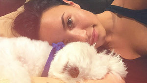 Demi Lovato's Adorable Dog Dies in 'Tragic Accident'