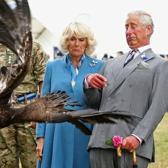 Prince Charles and Camilla Encounter an Eagle With So Much Royal Sass