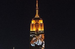 Endangered Animals Projected Onto Empire State Building