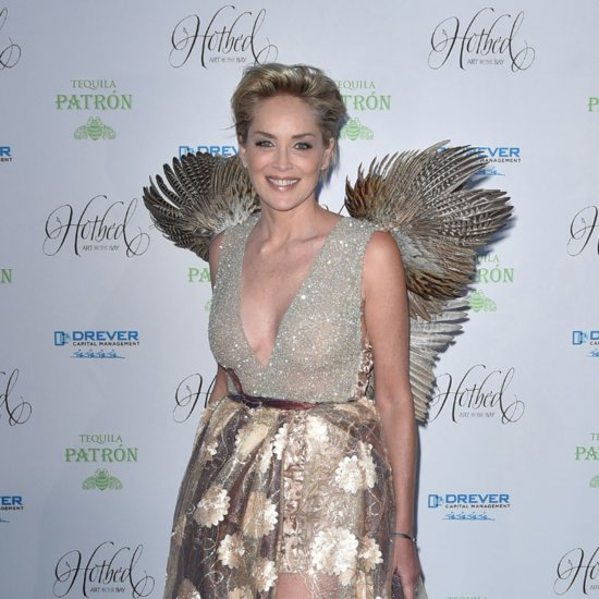 It's a Bird! It's a Plane! It's Sharon Stone!