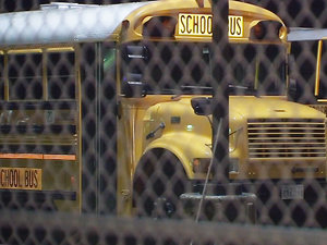 Texas School Bus Driver Hailed a Hero After Protecting Students From Erratic Woman Who Rushed Onto Bus