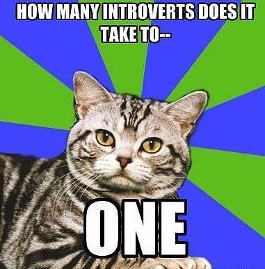 Introvert Problems