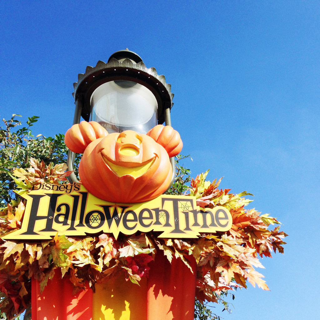 Hang Out at a Halloween-Themed Amusement Park