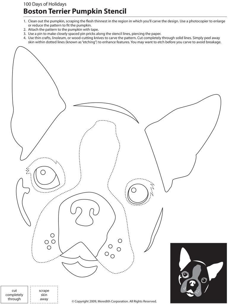 Downloadable dog breed pumpkin stencils popsugar pets