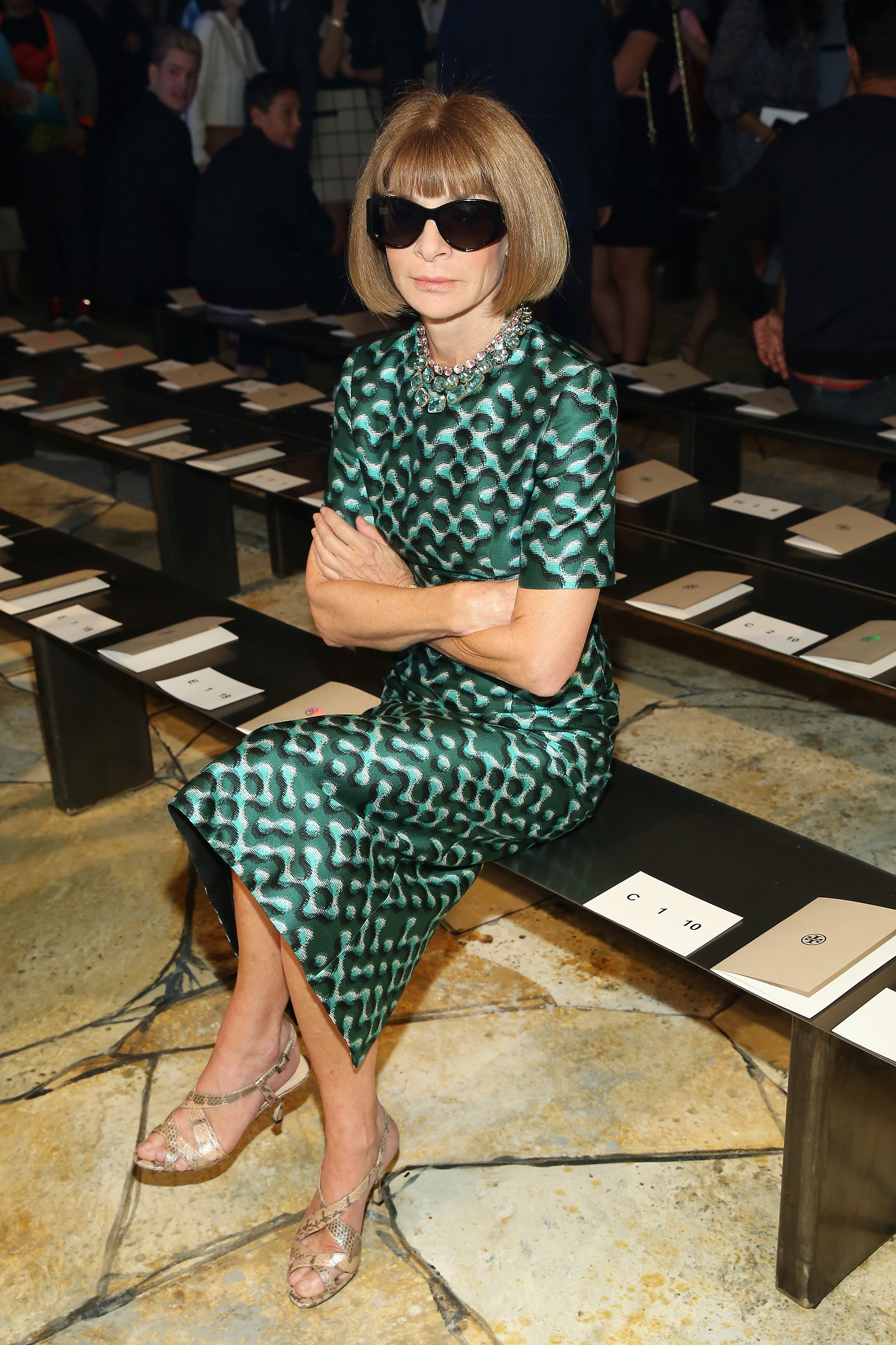The Anna Wintour Look Book Anna Wintour Anna And Look Books