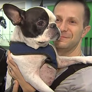 Air Canada Flight Rerouted to Save Dog