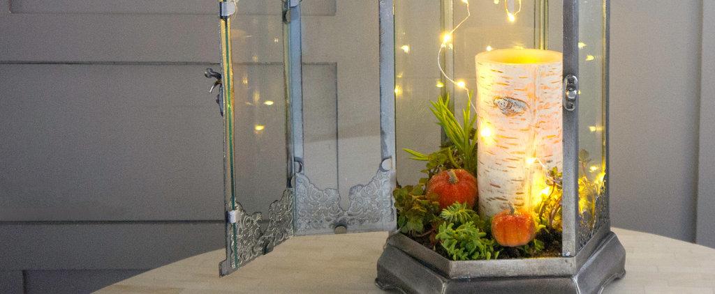 DIY This Easy Sparkling Fall Terrarium