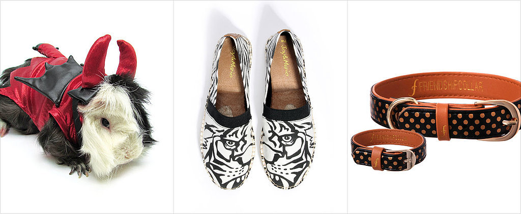 Fall Shopping Picks For You and Your Favorite Furry Friend