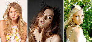 Top 10 Feline Fashion Trends of 2015