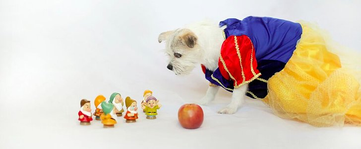 Even Your Dog Can Be a Disney Princess This Halloween
