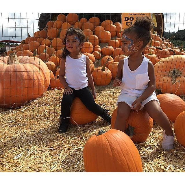 North and her friend picked out pumpkins in October 2015.