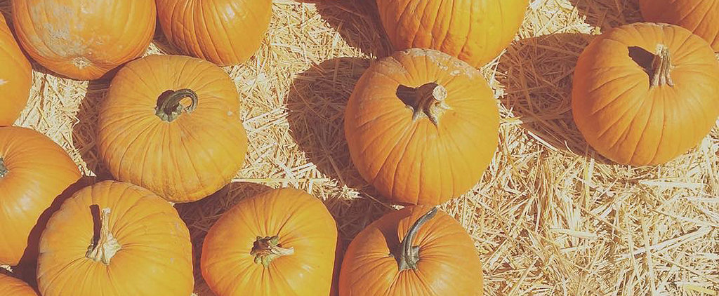 31 Frugal Ways to Celebrate Halloween