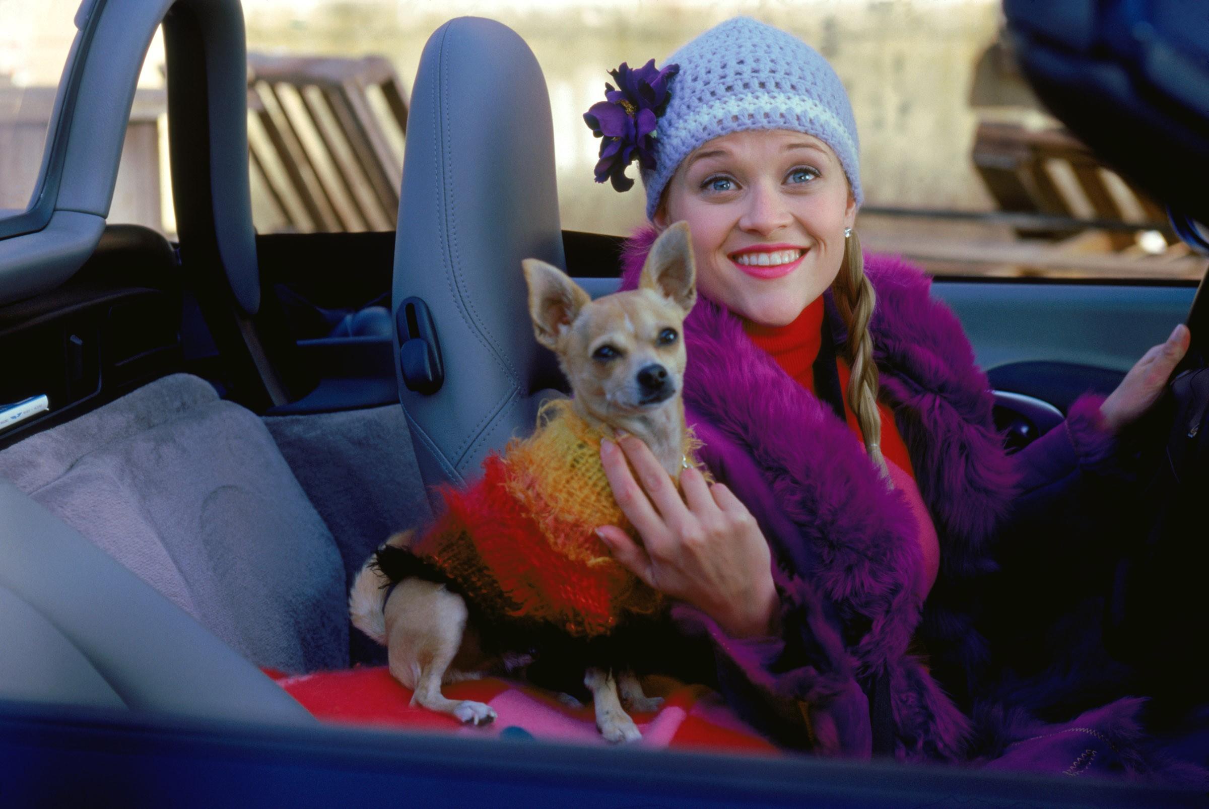 Смотреть блондинка с псом 11 фотография