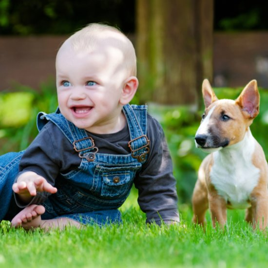 5 Reasons Being a Parent to a Pet Is Not the Same as Parenting a Person