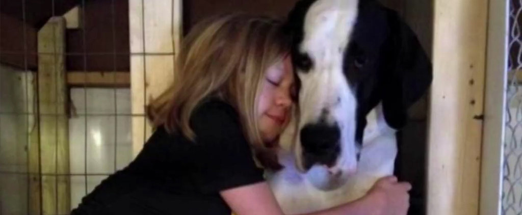 This Inspirational Story About a Young Girl and Her Great Dane Will Warm Your Heart