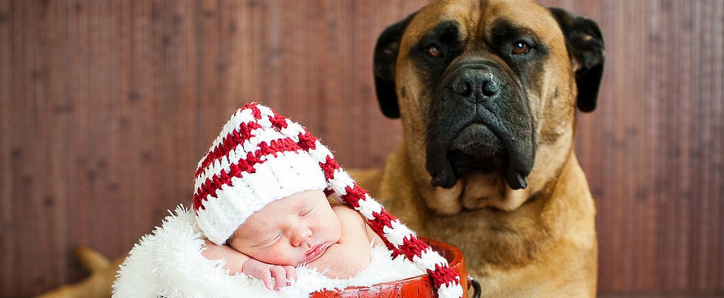 These Baby and Puppy Christmas Photos Will Make Your Heart Explode With Holiday Cheer