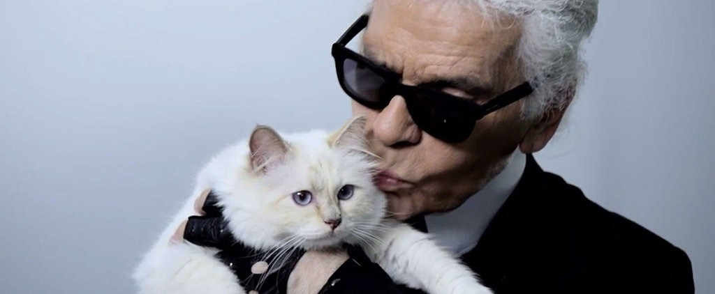 Meet Karl Lagerfeld's Cat, Choupette, Who Made $3 Million in a Year