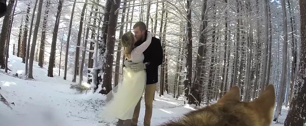This Dog Filmed a Wedding, and the Results Are Glorious