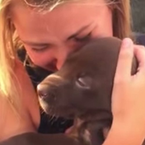 Guy Proposes to Girlfriend With a Puppy