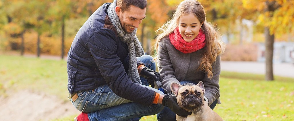 10 New Year's Resolutions Every Pet Parent Should Consider in 2016