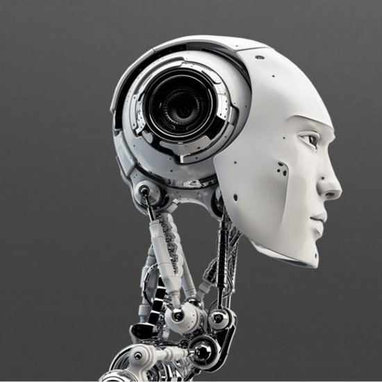 Artificial Intelligence Beauty Ranking Tool