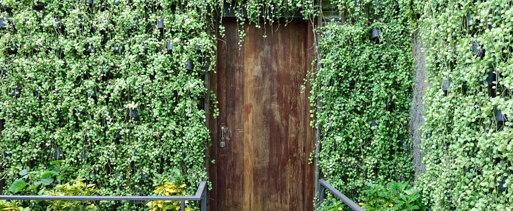 The Trendiest of All Walls Is the Living Garden Wall