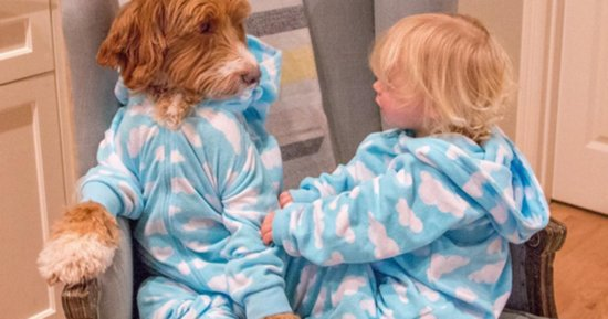 9 Painfully Cute Photos Of A Toddler And Dog Wearing Matching Outfits