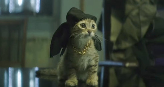'Keanu' Red Band Trailer Stars Key, Peele, and the Most Adorable Kitten