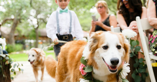 14 Out-Of-The-Box Weddings Trends You'll Soon Be Seeing Everywhere