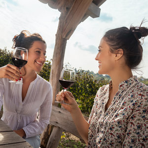 Why Women Should Stop Drinking If Planning to Get Pregnant